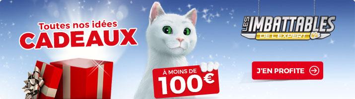 idees cadeaux a moins de 100 euros