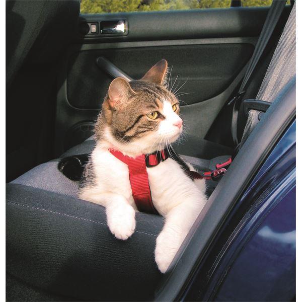 harnais de s curit voiture pour chat r f 1294 trixie feu vert. Black Bedroom Furniture Sets. Home Design Ideas